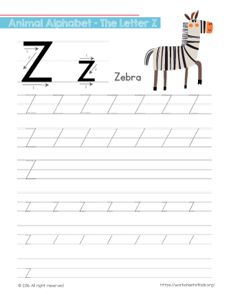 Tracing Letter Z With Zebra